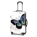 Πεταλούδα μεγάλη λευκή